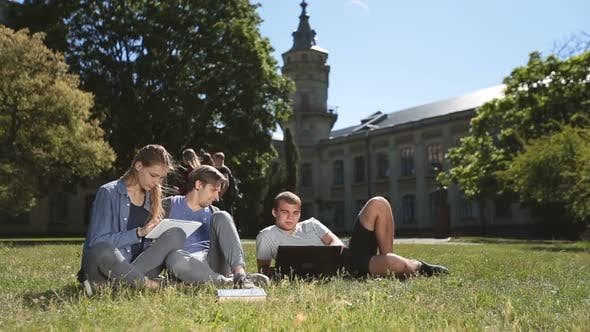 Cover Image for Positive College Students Studying on Campus Lawn