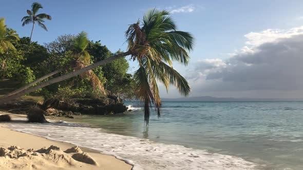 Thumbnail for Paradise Island