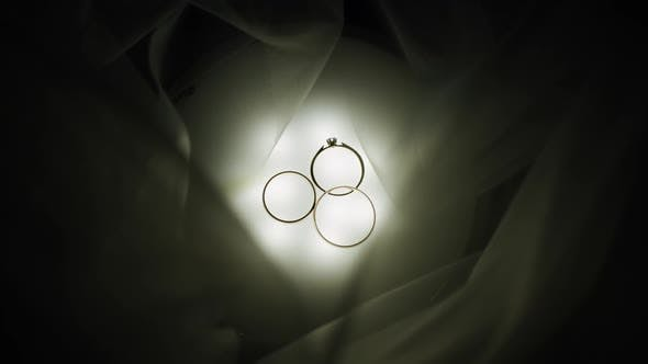 Thumbnail for Wedding Rings on Light Panel with White Dress Veil Bride's Decor Jewerly Accessories