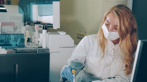 Blood Test in the Laboratory
