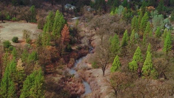 Thumbnail for Valley Trees Mountain