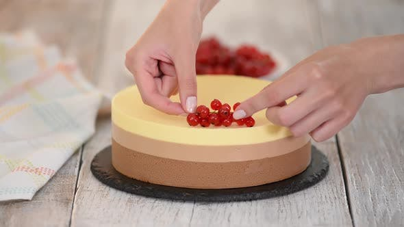 Thumbnail for Triple Chocolate Mousse Cake Decorate with Fresh Berries.