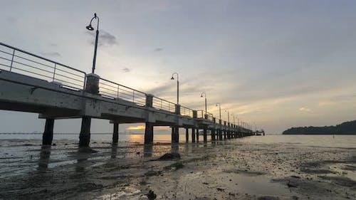 Timelapse sea creature move at coastal in sunrise morning
