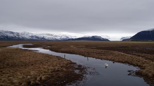 Thumbnail for Icelandic Marshland