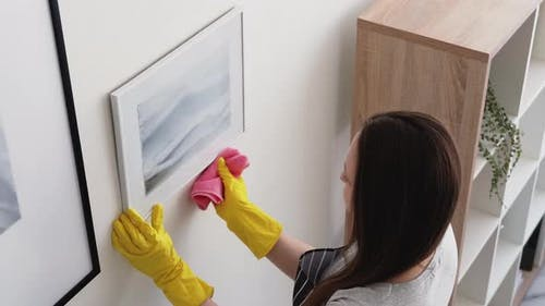 Cleaning Woman Home Hygiene Room Service Work