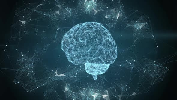 Human Brain Rotation Hologram