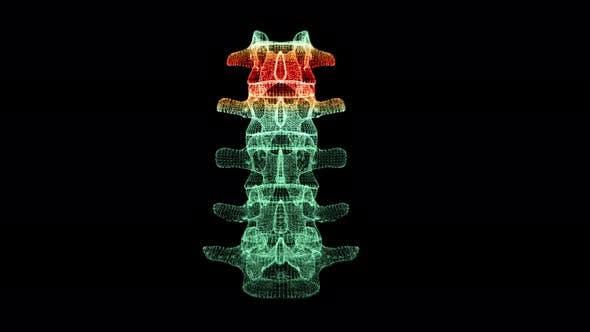 Thumbnail for Head Up Display of Advance Human Biomedical Diagnostic Backbone 02