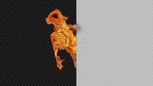 Burning Skeleton - Promo Show