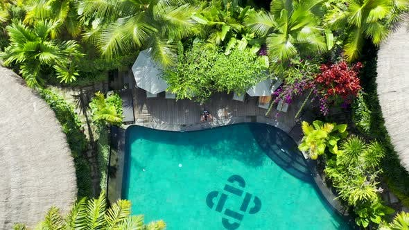 Tropical Villa on Pool with Coconut Palm Tree. Aerial View .