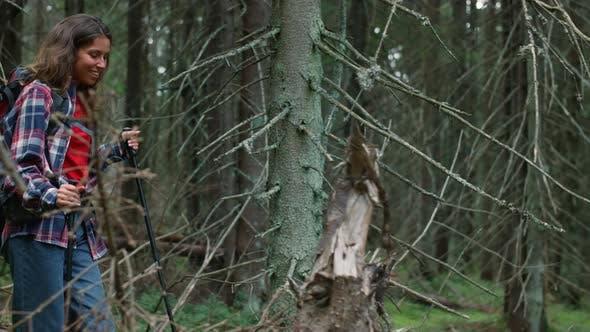 Tourist Walking in Fairytale Forest