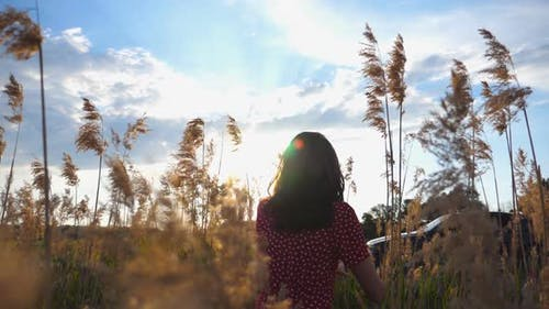 Young Unrecognizable Girl Walking Through Field of High Grass at Sunset Time