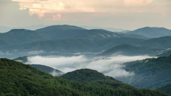 Thumbnail for Misty Evening above Clouds Moving in Green Forest Valley