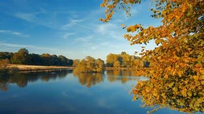 Autumn Scenery in Richmond, London