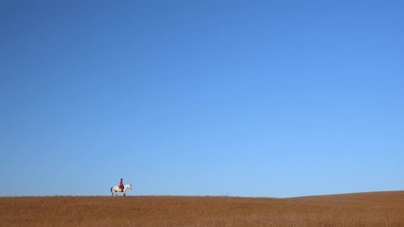 Thumbnail for Horsewoman Riding a Horse Strokes a White Horse Standing in a Field . Slow Motion. Side View