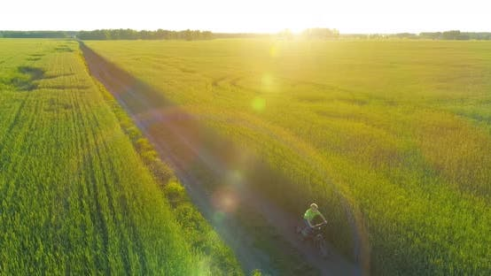 Cover Image for Young Boy, That Rides a Bicycle Thru a Wheat Grass Field on the Old Rural Road