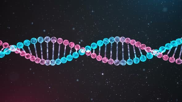Thumbnail for BiColor DNA Chain Loop