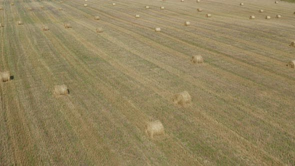 Thumbnail for Flying Over Rolling Haystack Field