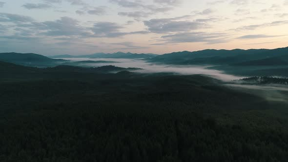 Thumbnail for Fog Over the Forest in the Carpathians