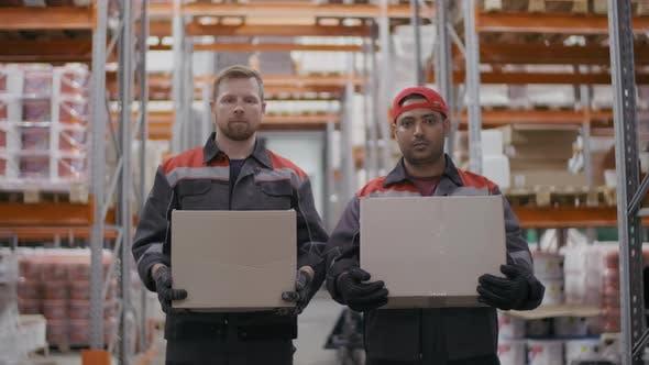 Thumbnail for Stockroom Workmen With Carton Boxes