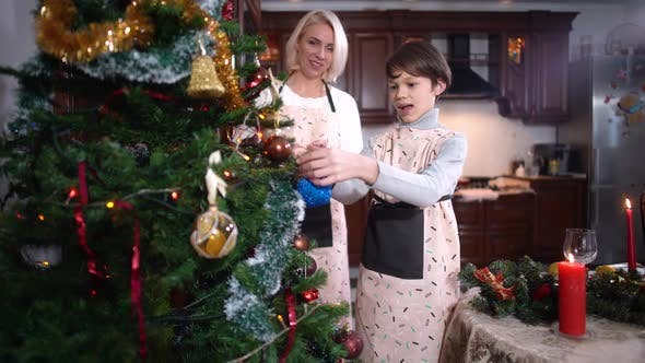 Thumbnail for Smiling Woman and Boy Decorating Christmas Tree at Home Talking