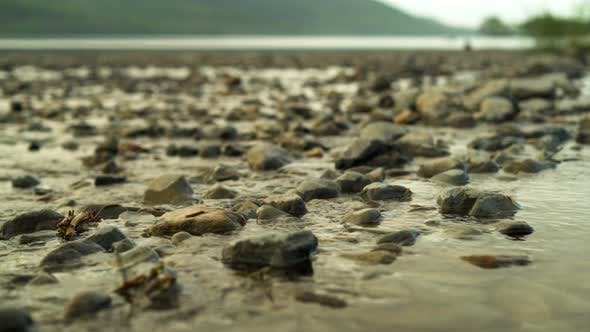 Panning Along a Shallow Riverbed