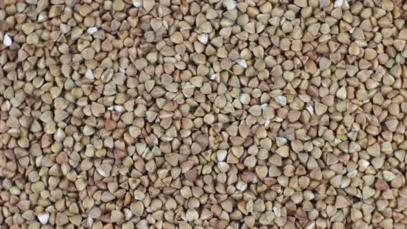 Thumbnail for Buckwheat Rotating