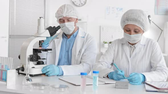 Diverse Colleagues Working in Laboratory