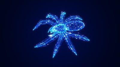 Spider Hologram
