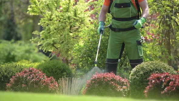 Pesticide Garden Plants Spraying with Professional Equipment