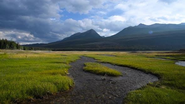 Stream running through lush valley