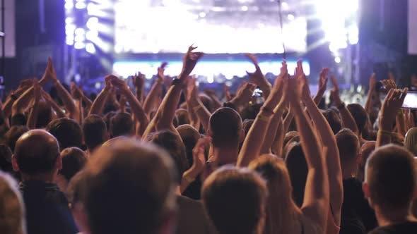 People Enjoying and Having Fun During Concert