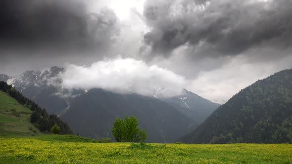 Thumbnail for Stormy Cloudy Mountain Climate in Meadow With Yellow Flowers