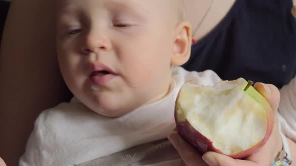 Thumbnail for One Year Old Baby Eating Apple