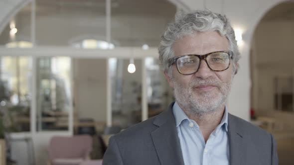 Thumbnail for Happy Handsome Grey Haired Businessman Wearing Glasses
