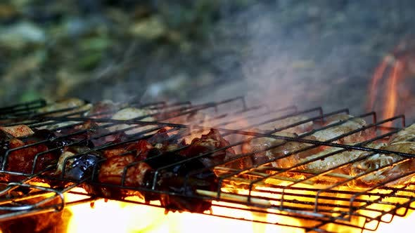 Thumbnail for Chicken And Lamb Liver On Barbecue Fire