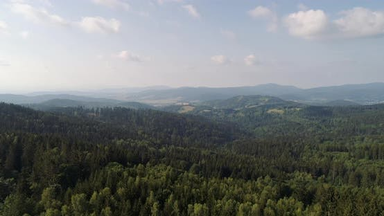 Thumbnail for Beautiful View of Forest and Fields Aerial