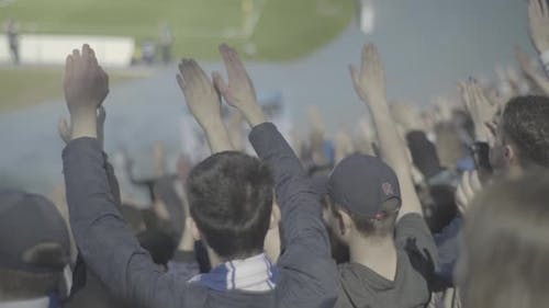 Fans in the Stadium During the Game.