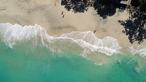 Thumbnail for Huge Ocean Beach Waves