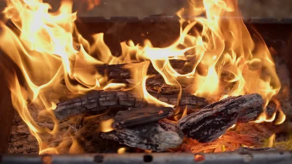 Thumbnail for Horizontal Closeup on Burning Wood in Barbecue Place in Forest.