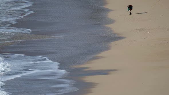 Cover Image for Beach Walking