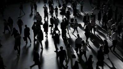 Crowds of Pedestrians Commuting in Metropolis