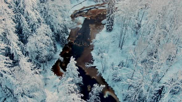 Narrow River with Ice Runs Across Wonderful Winter Forest