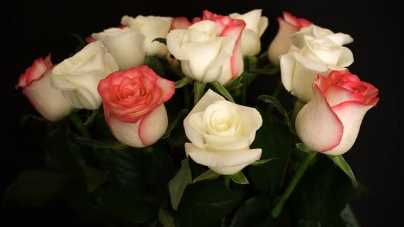 Thumbnail for Rotating White Pink Roses On The Background.