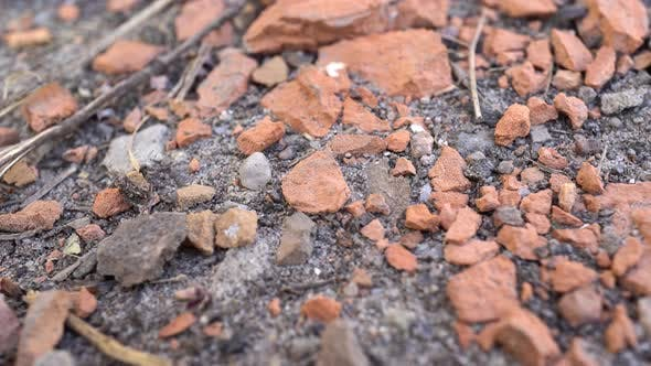 Cover Image for Pieces Of Brick On The Ground