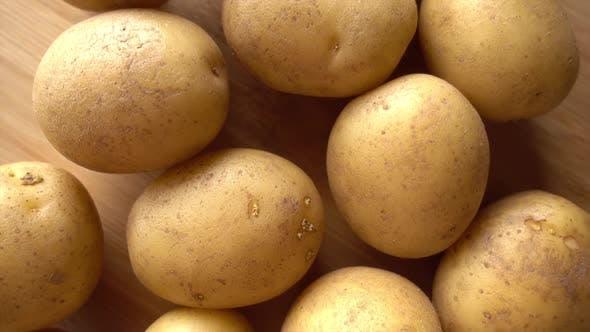 Thumbnail for Rotating Potatoes