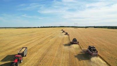 Combine Harvester. Wheat harvest