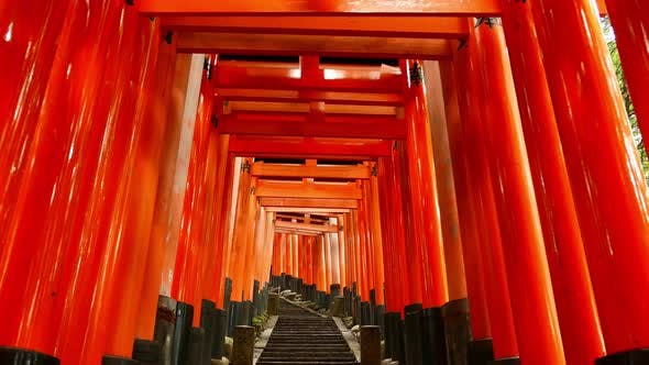 Torii gates glide in Kyoto, Japan
