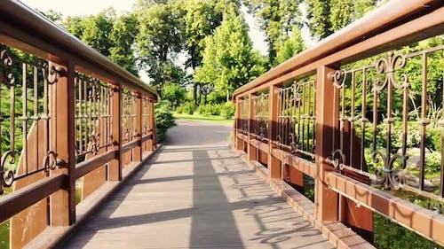 Bridge in Central Park at Sunny Day