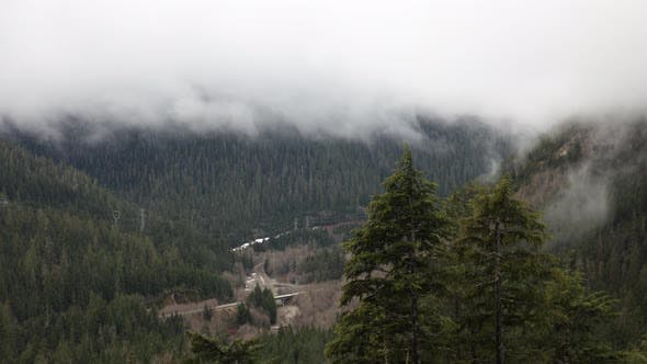 Cover Image for Evergreen Forest Highway Clouds Fog Power Lines Mist Timelapse