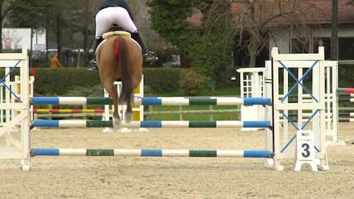 Jockey Jumping With Horses